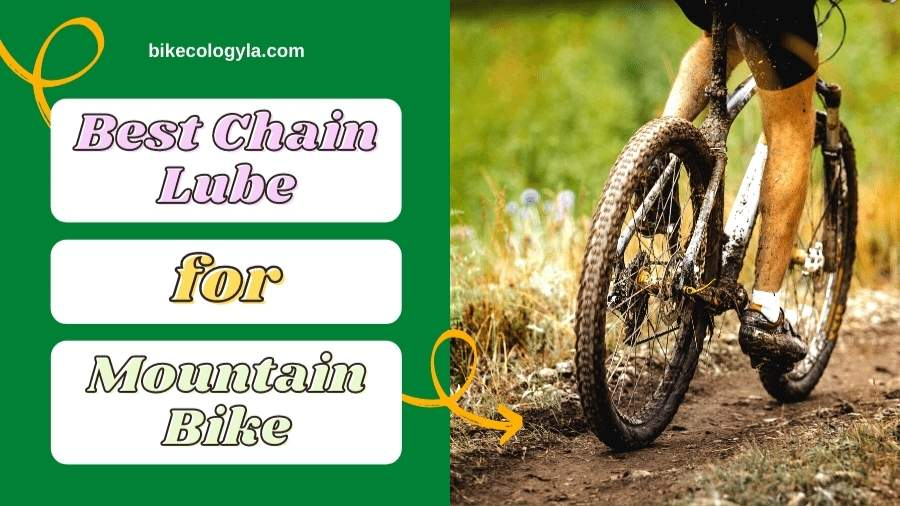 5 Best Chain Lube For Mountain Bike review in 2021