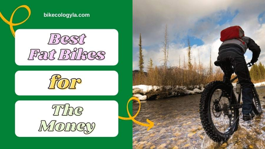 5 Best Fat Bikes for the money: Low budget but high-quality