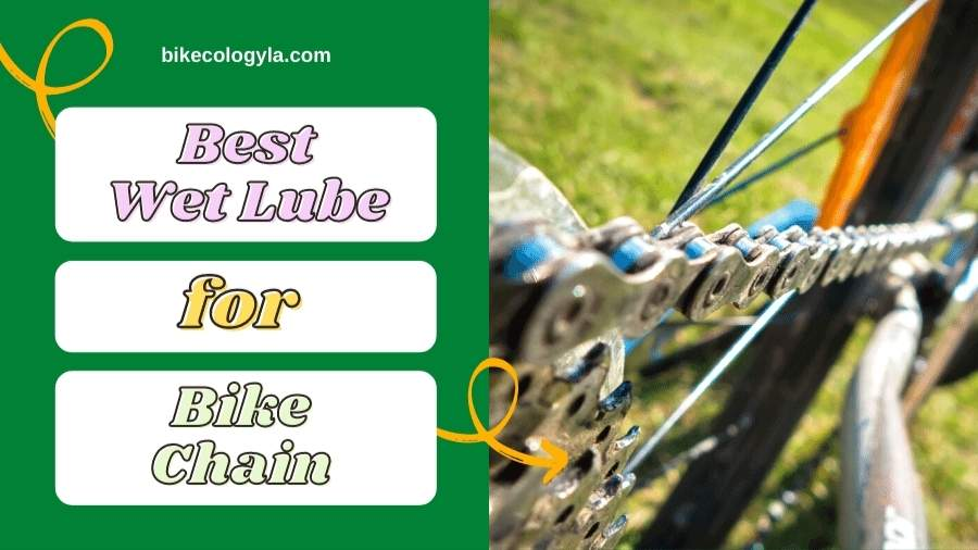 7 Best Wet Lube For Bike Chain review in 2021
